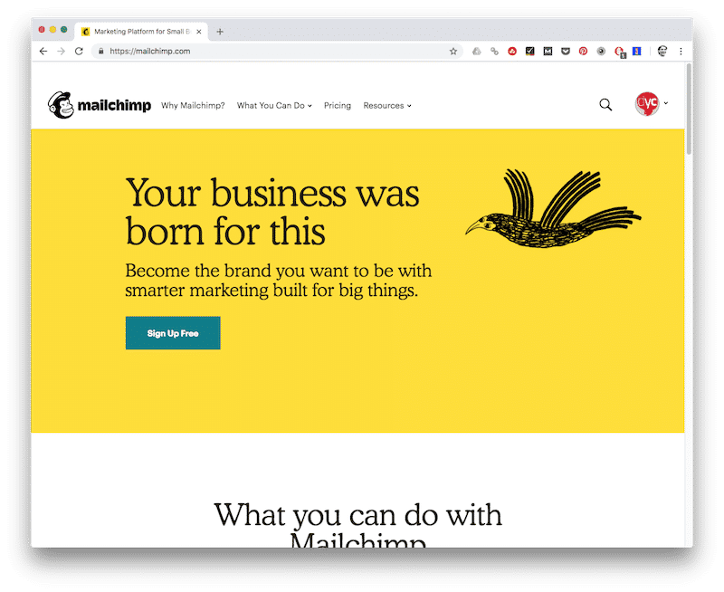 Mailchimp - tools voor copywriters